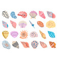 tropical seashell cartoon clam oyster and vector image vector image