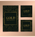 gold botanical card template frame set vector image vector image