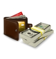 Leather wallet with credit card and bank roll vector image