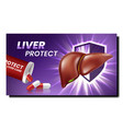 liver protect medicaments promotion poster vector image vector image
