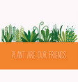 plant are our friends set decorative plants vector image