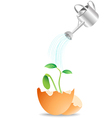 plant growing from egg vector image vector image