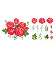 red roses bouquet wedding flowers decoration vector image vector image