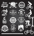 set bmx extreme sport club badge vector image vector image
