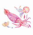squid batoidea jellyfish sea set vector image vector image