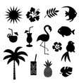 tropical theme black silhouettes vector image