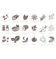 fragrant spices linear icons set spices and vector image vector image