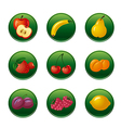 fruits and berries button set vector image vector image