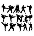 judo sport activity silhouettes vector image vector image