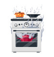kitchen stove cooker equipment and house vector image vector image