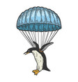 penguin bird fly on parachute color sketch vector image vector image