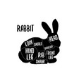 rabbit meat cutting charts vector image