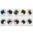 Set of portraits silhouettes of dog breeds