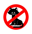 stop cat ban pet is forbidden red prohibitory vector image