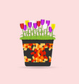 a pot of flowers vector image