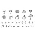 autumn doodles collection vector image
