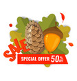 autumn sale banner with pine cone acorn and vector image