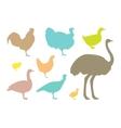 Farm bird silhouettes vector image vector image