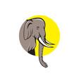 Indian Elephant Head Cartoon vector image vector image