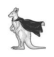 kangaroo in superhero cloak sketch vector image