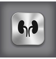 Kidneys icon - metal app button vector image vector image