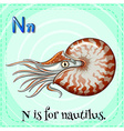 Nautilus vector image vector image
