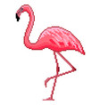 pixel art pink flamingo detailed isolated vector image vector image