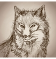 fox portrait forest hand drawing vintage vector image vector image