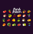 fruits and berries set icons food vector image