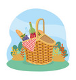 hamper with bread and wine bottle with grapes and vector image vector image
