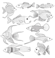 Set of contour black silhouettes of fish vector image