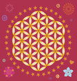 spring life flower seed power mandala vector image vector image