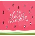 Watermelon Hello summer card vector image vector image
