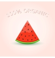 100 Organic Watermelon Slice vector image