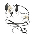 cat and dog haircut vector image vector image