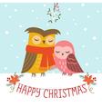 christmas couple owls vector image vector image