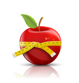 red apple with measuring tape isolated on white vector image