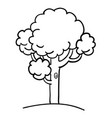 cartoon image of tree icon tree symbol vector image vector image