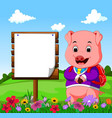 cute pig with wood sign cartoon vector image vector image