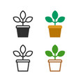 flower plant in a pot vector image vector image