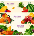 fruits exotic and garden banners set vector image vector image