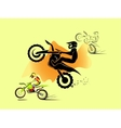 Motocross enduro set vector image vector image