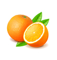 Orange and slice isolated on white vector image vector image