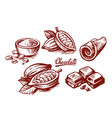 sketch chocolate and cocoa set on white vector image vector image