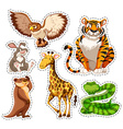 Sticker set of wild animals vector image vector image