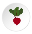 Turnip icon flat style vector image vector image