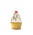 vanilla cupcake with cherry vector image vector image
