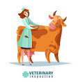 veterinary inspection flat composition vector image vector image