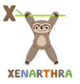 x is for xenarthra letter x xenarthra cute vector image vector image