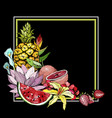 hand drawn exotic summer background with fruit vector image vector image